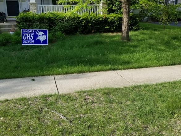 Mutchler Lawn.jpg