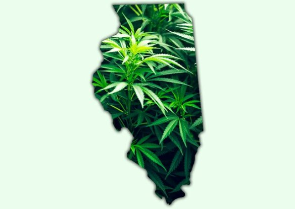 Illinois Pot
